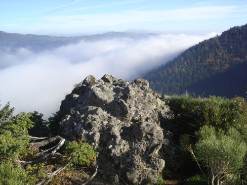 Le Rocher du Cerf- Le Lioran (15)